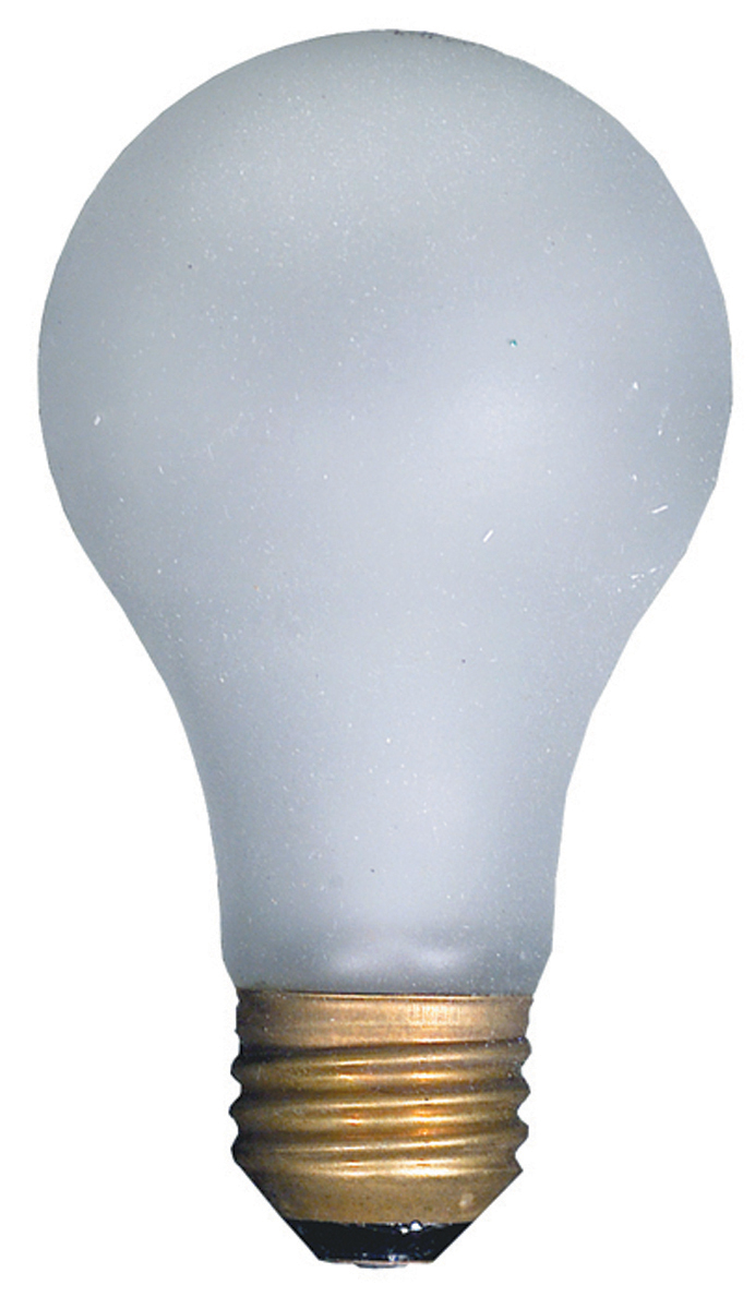 100 Watt Tuffskin Rough Service Bulb